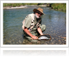 Spotlight-on-Big-Hole-River-Fly-Fishing-1000-ffccccccWhite-3333-0.20.3-1