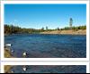 madison-river-fishing-1000-ffccccccWhite-3333-0.20.3-1