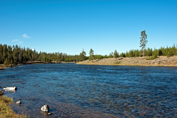 Getting to know the madison river healing waters lodge for Madison river fly fishing