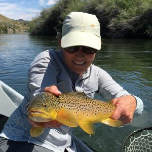 Beaverhead Fly Fishing Report Healing Waters Lodge