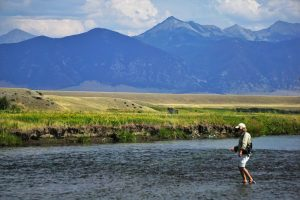 An Angler Fly Fishing the Madison River in Montana