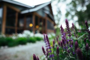 Flowers outside of the dining hall at Healing Waters Lodge